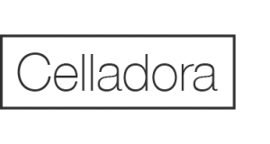 logo-300x160 logo