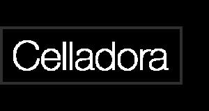 logo1-300x160 logo