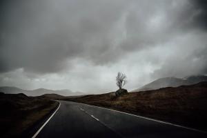 road-5-300x200 road-5
