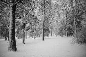 winter-2-2-300x200 winter-2-2