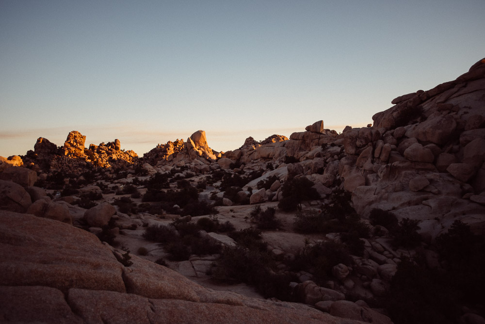 joshua-tree Epic Adventure Destination Engagement Session | Joshua Tree, CA