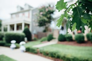 backyard-wedding-details-300x200 backyard-wedding-details