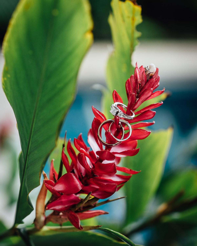 creative-wedding-ring-photograph-1 Costa Rica Destination Wedding