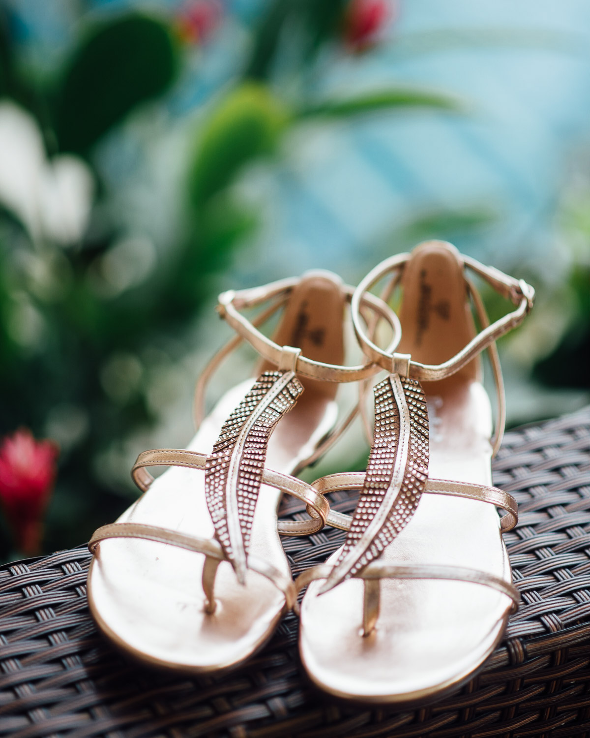 gorgeous-shoes-feather-detail Costa Rica Destination Wedding