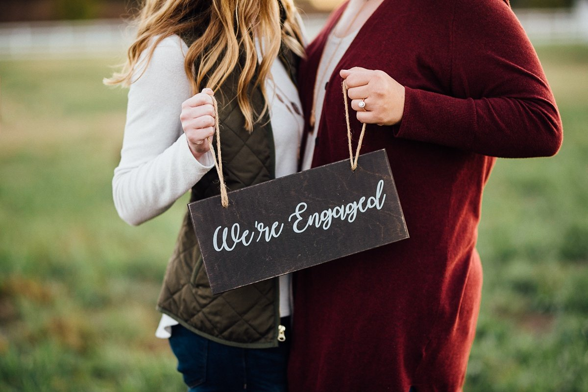 were-engaged-sign Hot Air Balloon Proposal