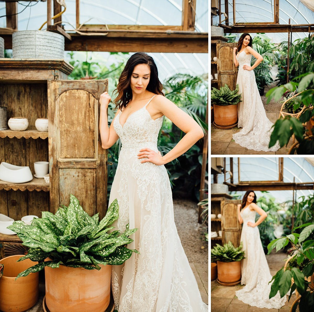 bride-in-greenhouse Greenhouse and Percy Warner Bridal Session