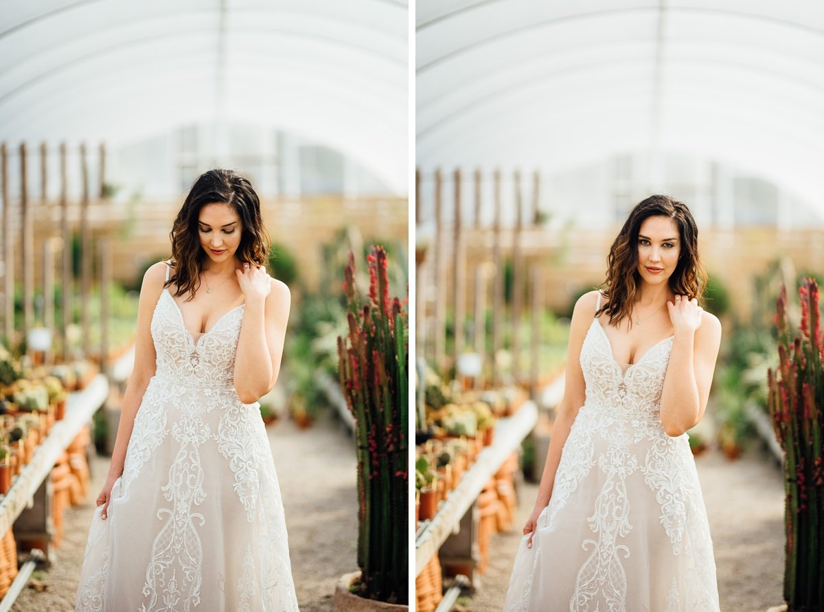 nashville-bridal-portrait Greenhouse and Percy Warner Bridal Session