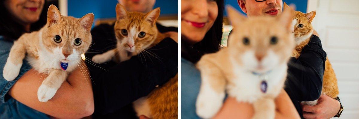 engagement-photos-with-cats East Nashville Bar Engagement Session | Fox Nashville